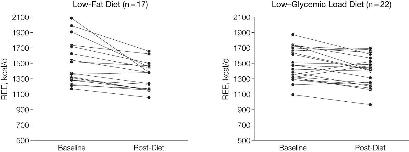 metabolismo basale a confronto